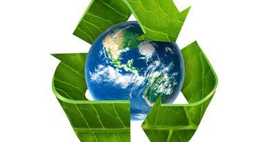 4 práticas básicas para adotar na sua empresa e preservar o meio ambiente