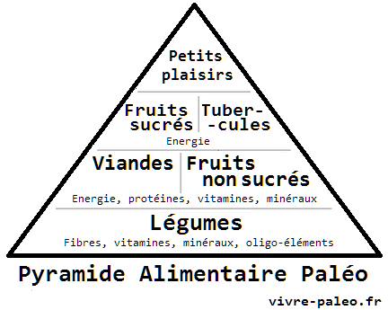 https://i0.wp.com/vivre-paleo.fr/wp-content/uploads/2013/07/La-pyramide-alimentaire-pal%C3%A9o.png