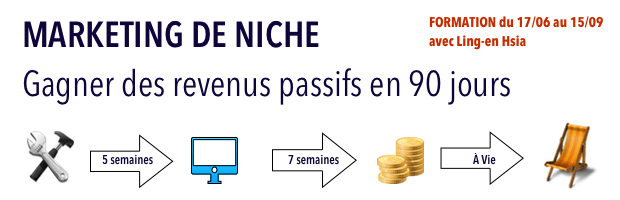 Marketing de niche formation