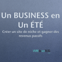 sites de niche revenus passifs
