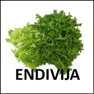 Endivija