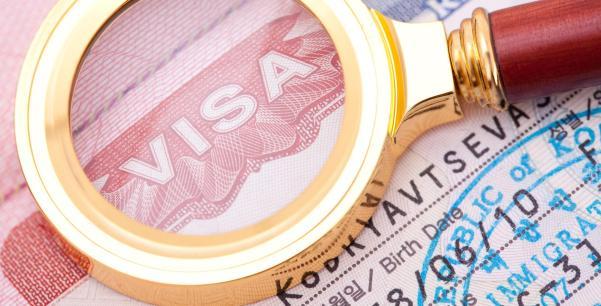 ulusal vize