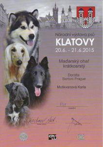 Národní výstava Klatovy 20.6.2015