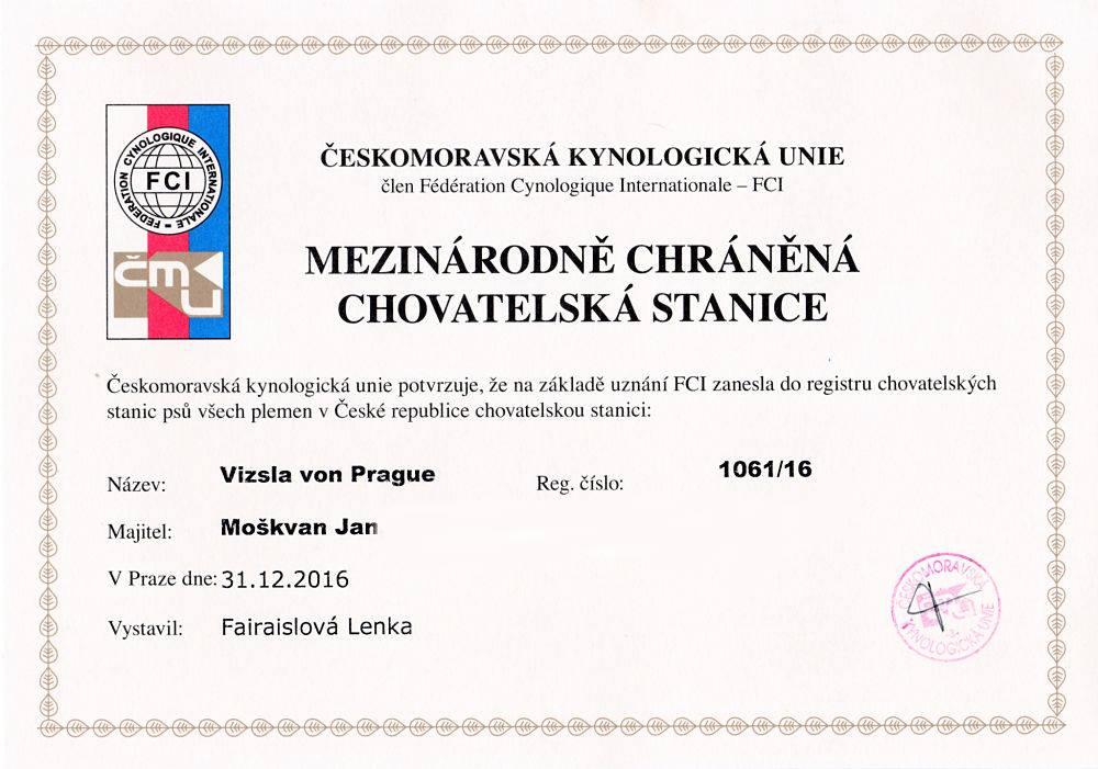 CHS Vizsla von Prague