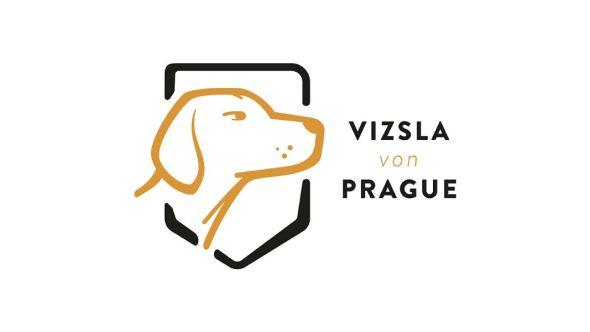Chovatelská stanice Vizsla von Prague