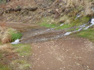 Snow melt heading to the Buckland river.