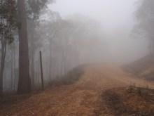 Fog on the mount
