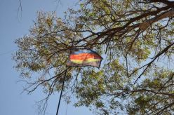 The VK5 Parks flag, flying proudly