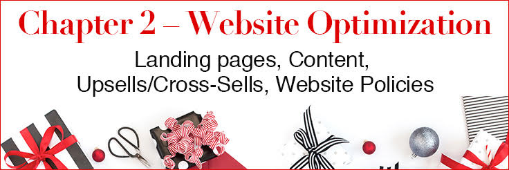 Holiday Marketing Tips website optimization chapter image