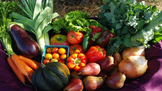 foods that cause miscarriage-unwashed vegetables