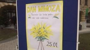 Dan mimoza: U Hrvatskoj 100 žena izgubi bitku s rakom maternice