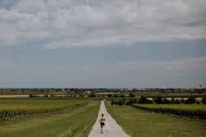 Grad Ilok_utrka_vinogradi2