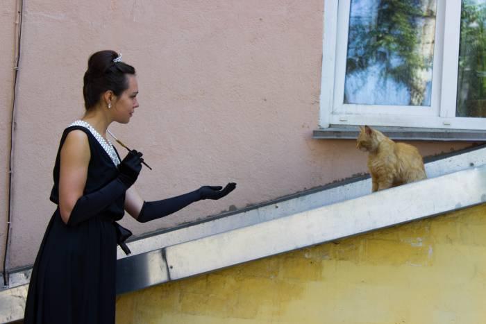 Будешь моим котом?