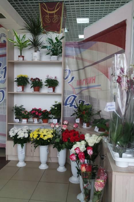 """Павильон с цветами в магазине """"Витебские продукты"""""""