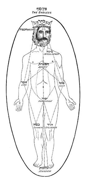 Адам, матрица, Каббала, Корженевский