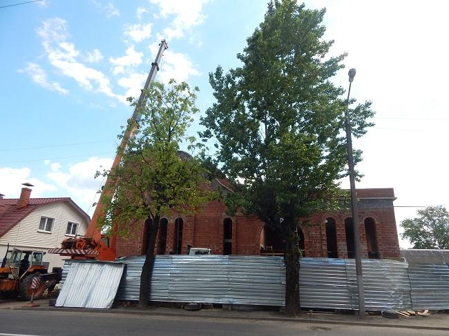 синагога, улица грибоедова
