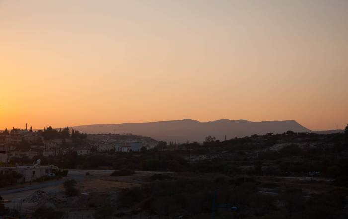 Кипарисы украшают кипрский пейзаж повсюду. Фото Анастасии Вереск