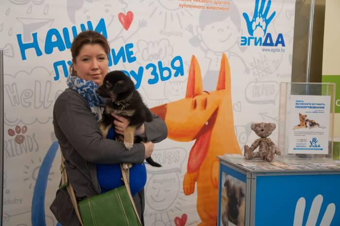 """У общества защиты животных """"Эгида"""" есть сайт, где можно выбрать себе друга из приюта. Фото Анастасии Вереск"""