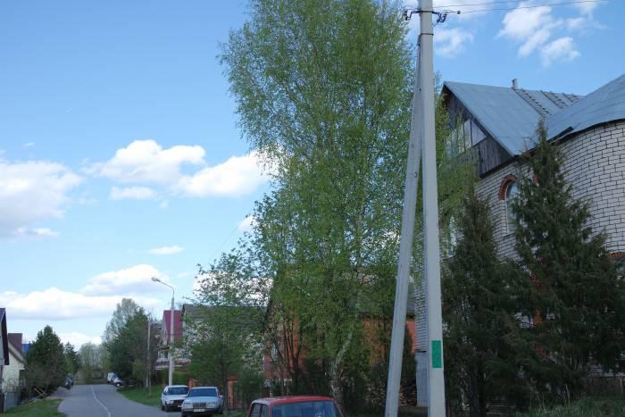 А вот вид с другой стороны усадьбы. И тут дерево пока что не мешает электропроводам. Фото Владимир Борков