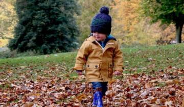 дети, прогулка, детский сад