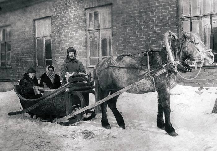 «Никакие поломки или болезнь лошади не может быть причиной опаздывания на дежурство». История витебской скорой помощи