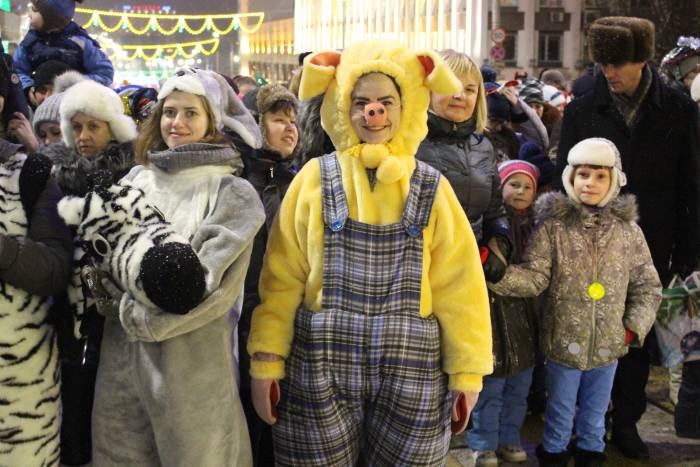 свинка, парад, новый год