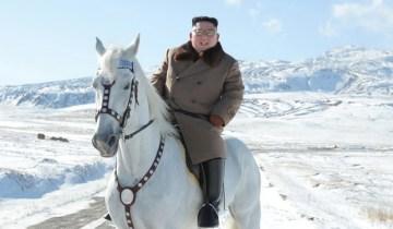 Ким Чен Ын в Витебске