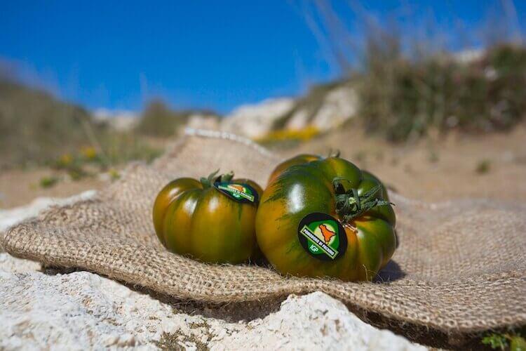 pomodoro-igp-di-pachino