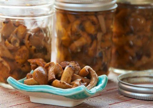Рецепт приготовления опята маринованных с маслом