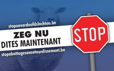 Vlaams Belang lanceert petitie tegen onverdoofd slachten in Brussel
