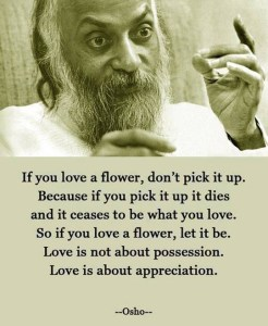 love flower osho