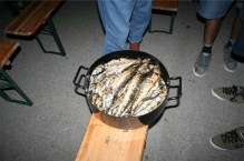 First pot of pilchards