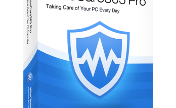 Wise Care 365 Pro 5.5.5 Build 550 Activation Key 2020 With Crack