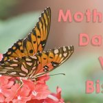 Mothers Day at VM Bistro