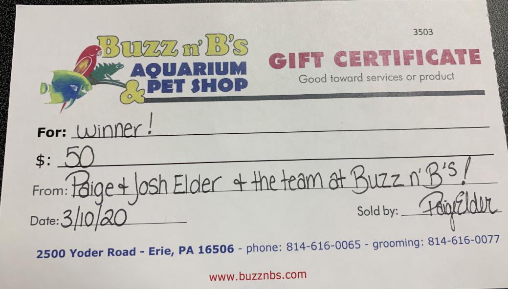 Buzz n' B's $50 Gift certificate