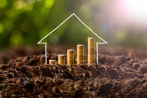 Saving money, growth of savings.