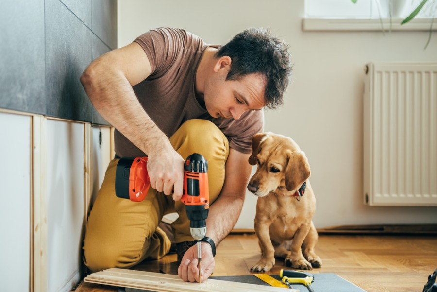 Man using tool with dog