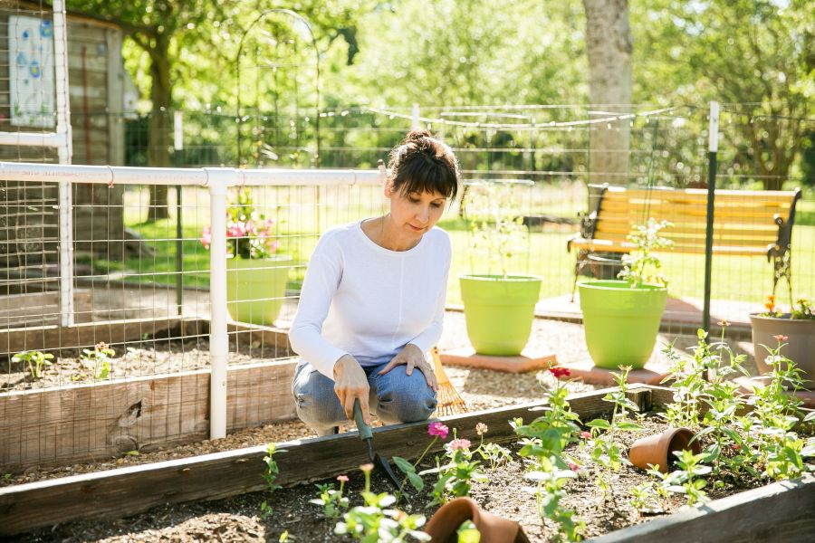 Woman in front of a garden, tending to it.