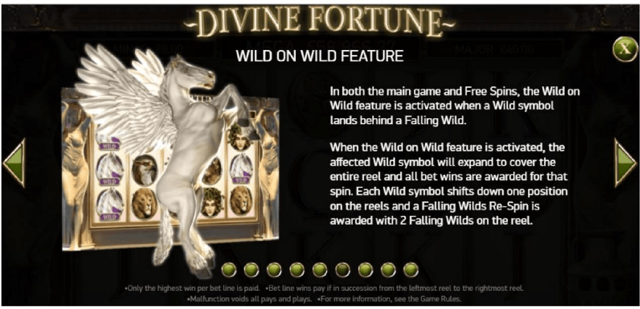 Divine Fortune Wild on Wild Feature