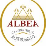 Tommaso Marangi, Cantina Museo Albea