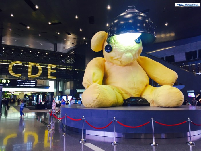 Aeroporto Doha - Urso