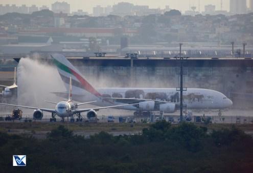 Airbus_A380_GRU (16)