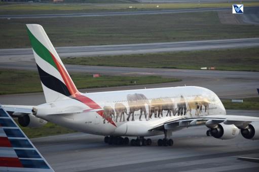 Airbus_A380_GRU (20)