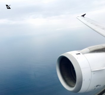 Avianca - JFK_SAL_LIM (33)