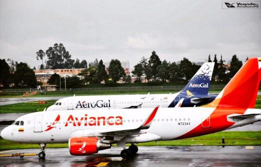 Bogotá - Avianca - Airbus A319 (3)