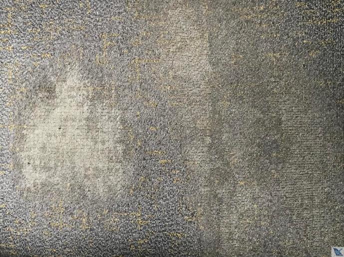 Carpete - B787 - Scoot 2