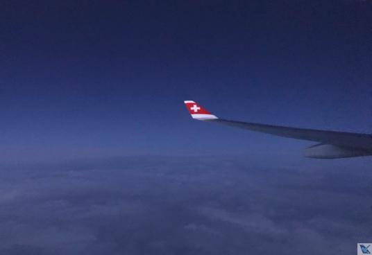 Asa A330 - Swiss - Escuro 2