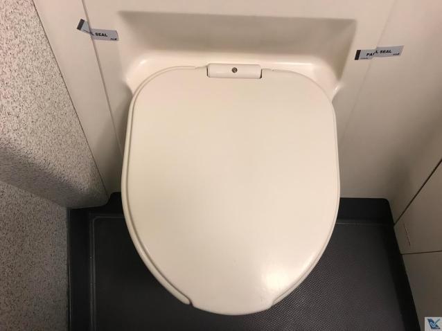 Banheiro - B767 - ANA - vaso