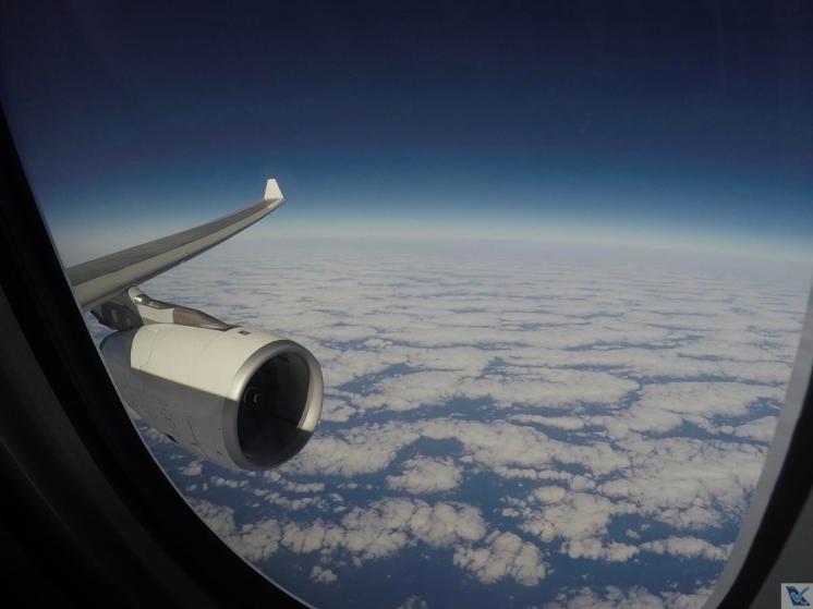 Esq.-Asa-Motor-A330-TAP-REC-LIS-6