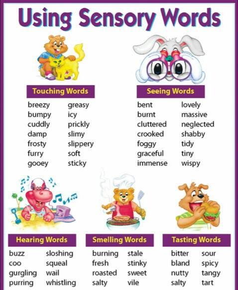 Using Sensory Words Vocabulary Home